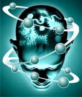 Neurociências na Educação